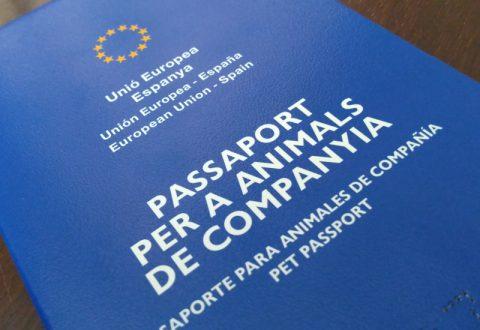 imagen del pasaporte de animales de compañía