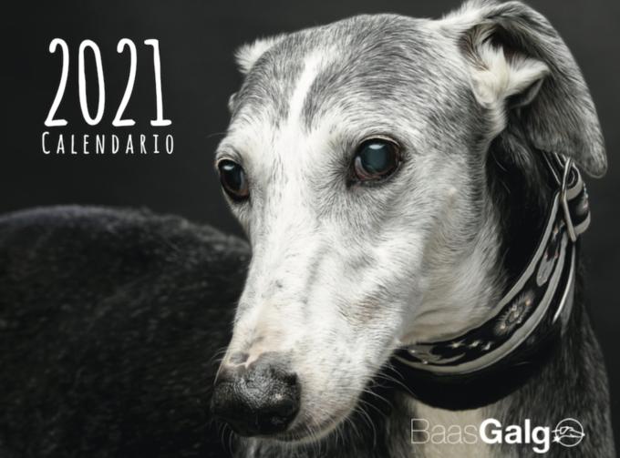Portada del Calendario BaassGalgo 2021